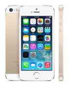 Apple iPhone 5s 16GB Gold Wholesale Suppliers