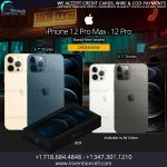 Apple iPhone 12 Pro Max Wholesale
